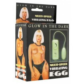 Vibrating Egg Glow In The Dark